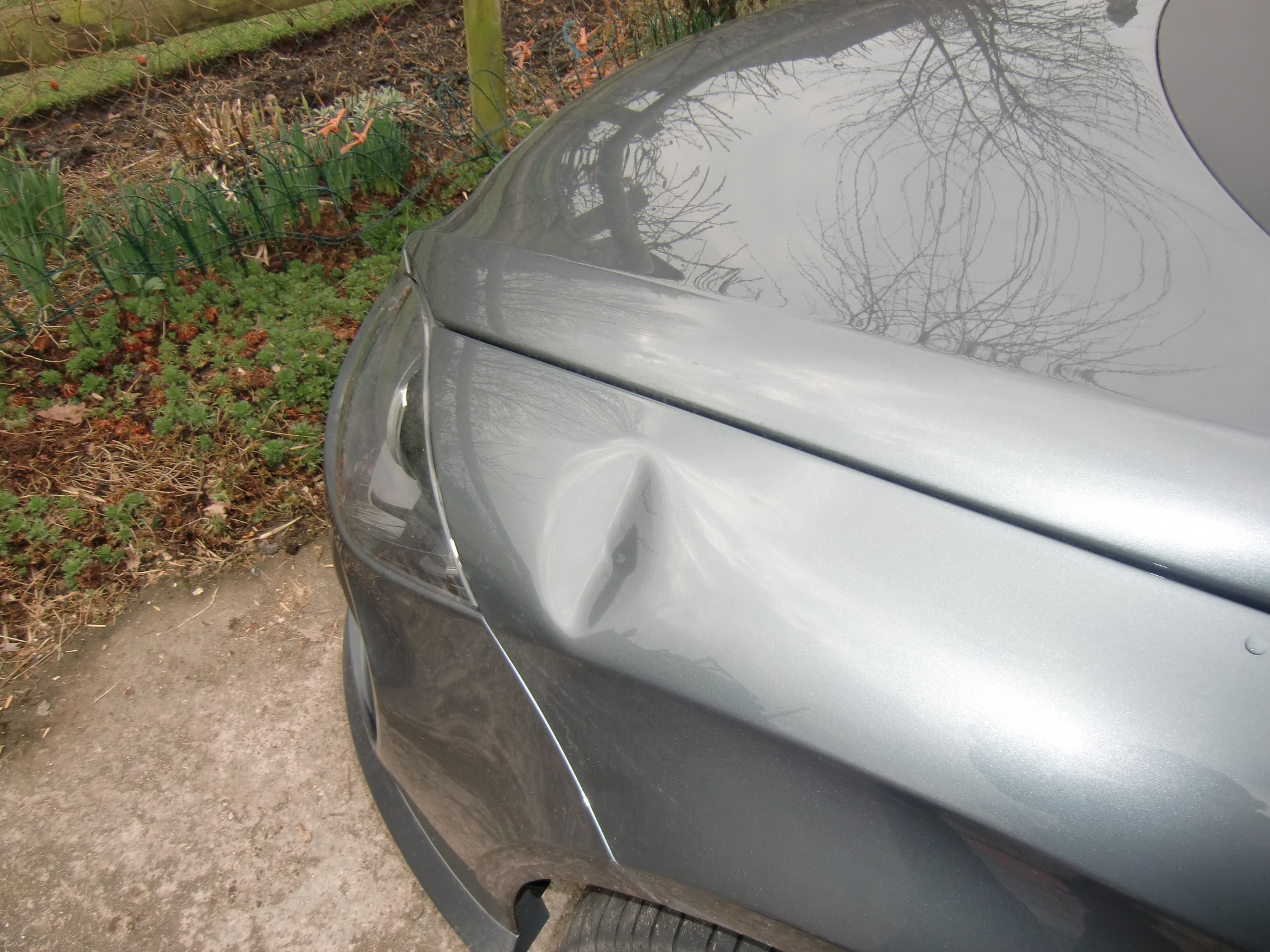 Before Dent-Experts Repair photograph